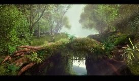 CG FOREST03
